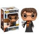 Harry Potter (with Hedwig) Exclusive POP! Harry Potter Figurine Funko