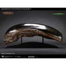 PRECOMMANDE Alien New Warrior Life Size Head Prop Replica CoolProps