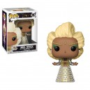 Mrs. Wich POP! Disney Figurine Funko