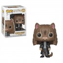 Hermione Granger (as Cat) POP! Harry Potter Figurine Funko
