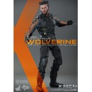Wolverine - X-Men: Days of Future Past MMS264 Figurine 1/6 Hot Toys