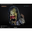 PRECOMMANDE Wolf Predator Life Size Buste Coolprops